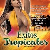 Exitos Tropicales de Alberto Beltran