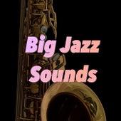 Big Jazz Sounds von Various Artists