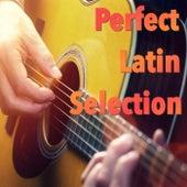 Perfect Latin Selection de Various Artists