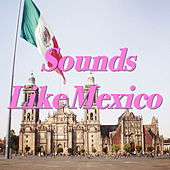 Sounds Like Mexico de Various Artists