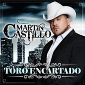 Toro Encartado by Martin Castillo
