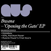 Opening The Gate EP by Bwana