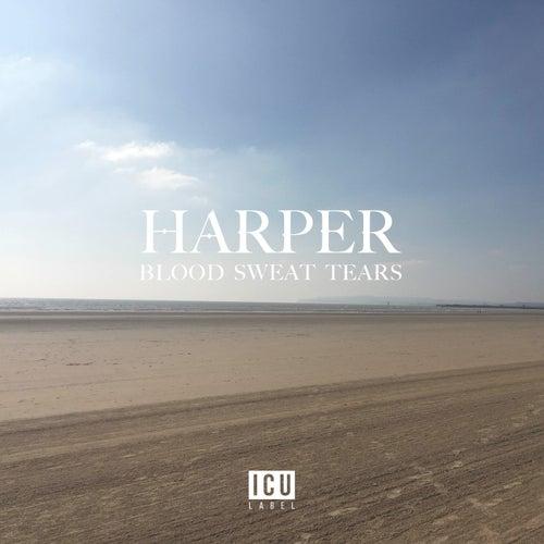 Blood Sweat Tears by Harper