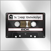In Deep Knowledge de I.D.K.