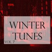 Winter Tunes, Vol. 8 von Various Artists