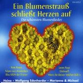 Ein Blumenstrauß schließt Herzen auf de Various Artists