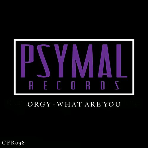 What Are You by Orgy