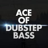 Ace of Dubstep Bass de Dubble Trubble