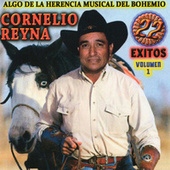 22 Exitos, Vol. 1 by Cornelio Reyna