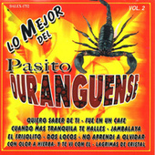 Pasito Duranguense, Vol. 2 von Various Artists