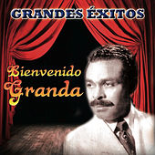 Grandes Exitos by Bienvenido Granda