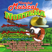 Variedad Musical Nortena by Various Artists