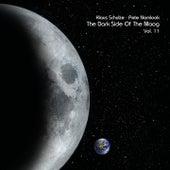 The Dark Side of the Moog, Vol. 11 von Klaus Schulze