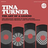The Art Of A Legend by Tina Turner