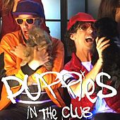 Puppies in the Club by Lewberger