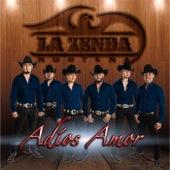 Adios Amor by La Zenda Nortena