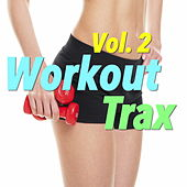 Workout Trax, Vol. 2 by Various Artists