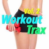 Workout Trax, Vol. 2 de Various Artists