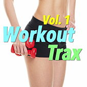 Workout Trax, Vol. 1 de Various Artists