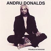 Trouble In Paradise by Andru Donalds