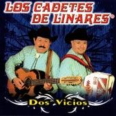 Dos Vicios by Los Cadetes De Linares