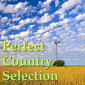 Perfect Country Selection de Various Artists