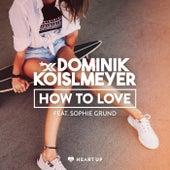 How to Love von Dominik Koislmeyer