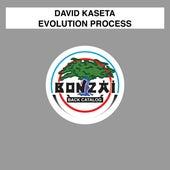 Evolution Process by David Kaseta