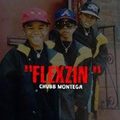 Flexzin de Chubb Montega