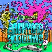 Backyard Hooligans by Bermuda
