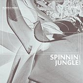 Spinnin Jungle - Single by Mint