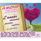 Amour: Mode d'emploi en 100 chansons (L'amour naissant, passion, rupture, et pardon...) von Various Artists