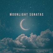 Moonlight Sonatas de Various Artists