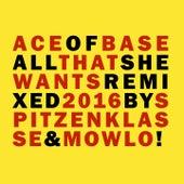 All That She Wants (Remixes 2016) de Ace Of Base