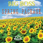 Spring Package von Various Artists
