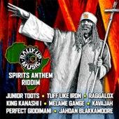 Spirits Anthem Riddim Compilation by Various Artists