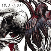 Take This Life by In Flames