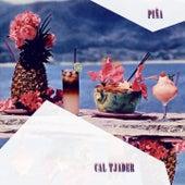 Pina by Cal Tjader