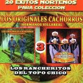 20 Exitos Nortenos Para Coleccions by Various Artists