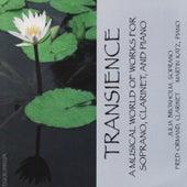 Transience by Julia Broxhom, Fred Ormand, Martin Katz
