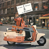 Have Guitar, Will Travel de Bo Diddley