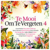 Te Mooi Om Te Vergeten Vol. 4 de Various Artists