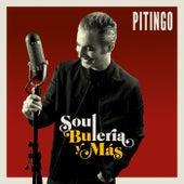 Soul, Bulería y más von Pitingo