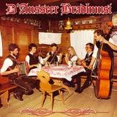 D' Ausseer Bradlmusi von Various Artists