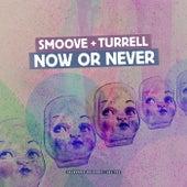 Now or Never (Radio Edit) - Single de Smoove & Turrell