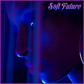 Soft Future van Various Artists