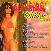 Cumbias Chidas, Vol. 12 de Various Artists