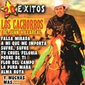 20 Exitos by Los Cachorros de Juan Villareal