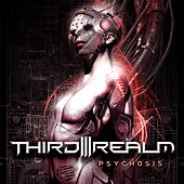 Psychosis by Third Realm