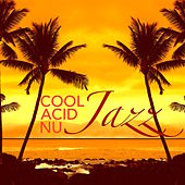 Cool, Acid & Nu Jazz – Jazz Music for Dinner Party, Cocktails and Drinks by Relaxing Instrumental Jazz Ensemble